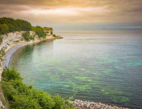 You need to visit Stevns Klint before it's overrun by tourists
